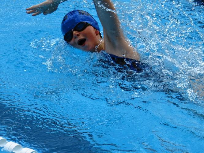 milford rotary swim meet